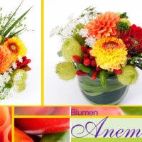 Blumengesteck gelb und rot bei Blumen Anemone In München