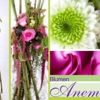 Blumengesteck bei Blumen Anemone in München - Sendling