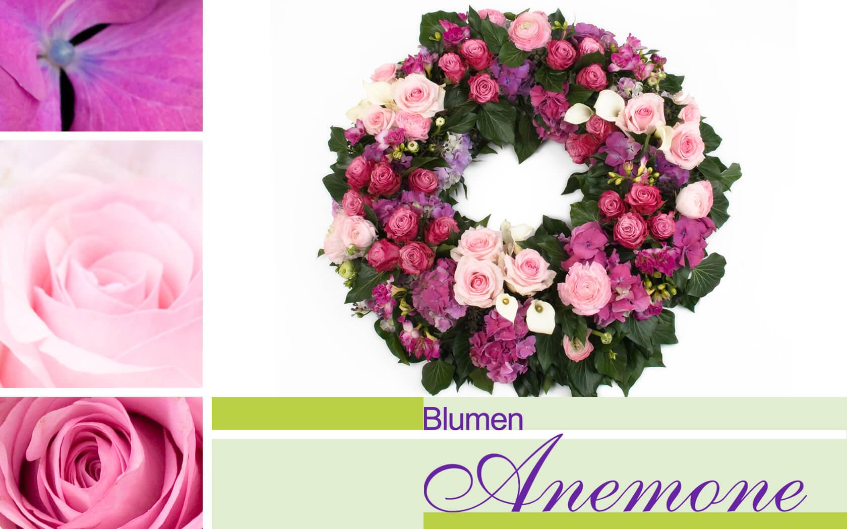 Blumen Anemone München – Ihr Florist in München-Sendling