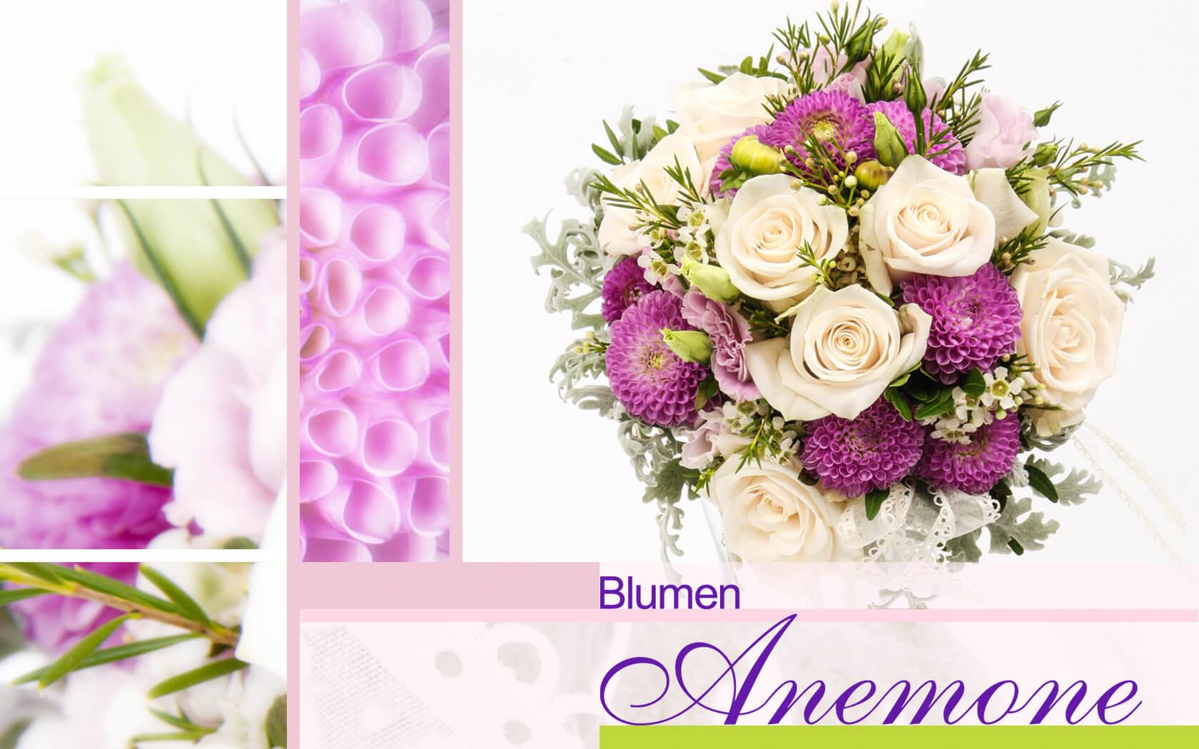 Blumen Munchen Blumen Anemone Munchen