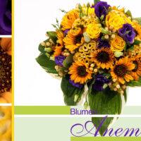 Blumenstrauß gelb und lila mit Sonnenblumen bei Blumen Anemone in Obergiesing