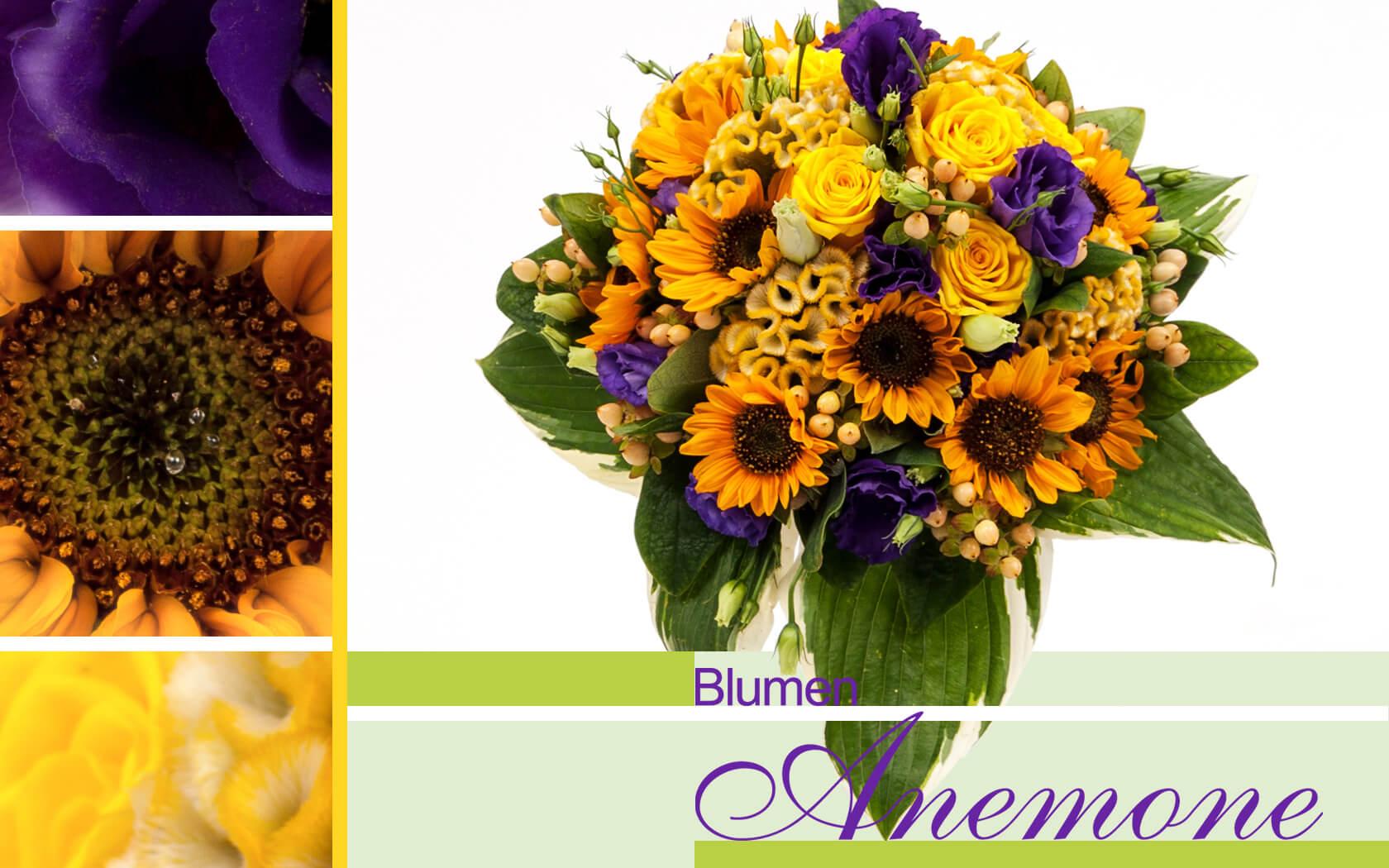 blumenstrau gelb und lila mit sonnenblumen bei blumen anemone in sendling blumen anemone m nchen. Black Bedroom Furniture Sets. Home Design Ideas