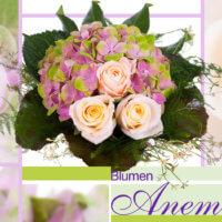 Blumenstrauß rosa Rosen Blumen Anemone München